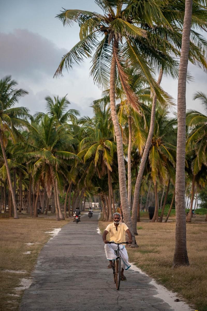 Man bicycling, Agatti, Lakshadweep, India.