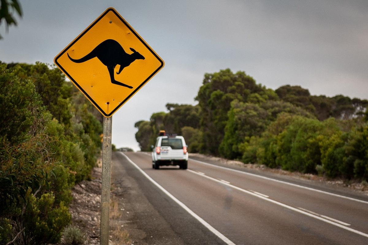 Beware, Kangaroo Island, Australia.