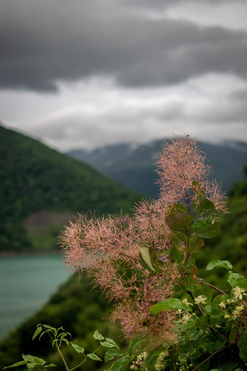 Ananuri Lake, Georgia.