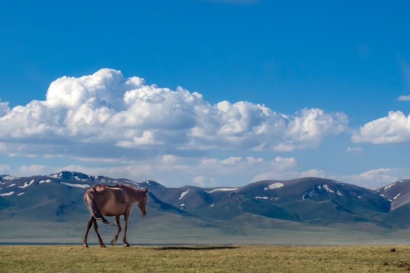 Surrounded by mountains, Song-Kul Lake, Kyrgyzstan.