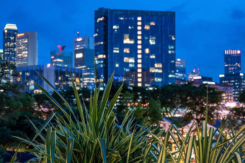 Travelgrapher.com-Inspire-Singapore-Fort-Canning-Park-City-View